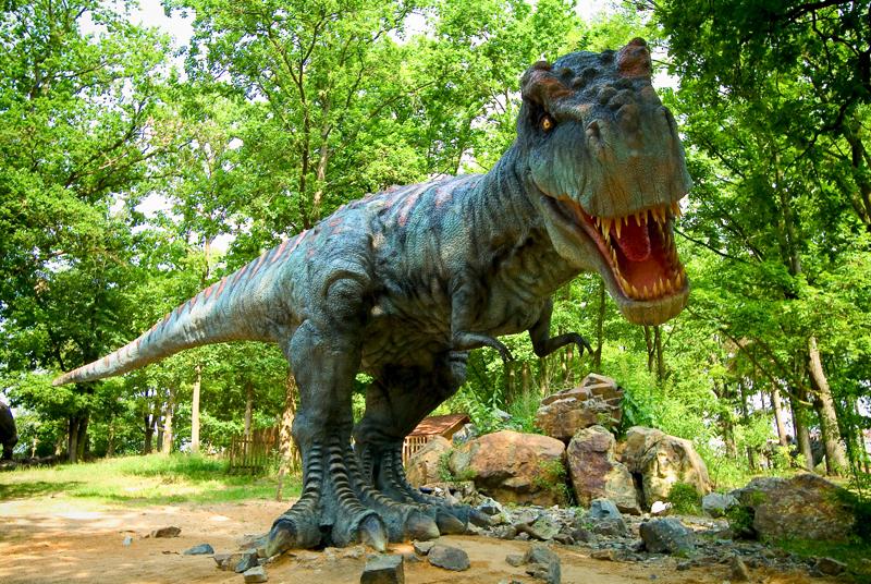 130415_A_T_Rex