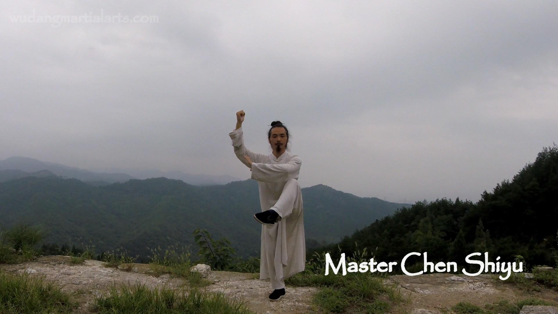 Wudang-Chen-Shiyu