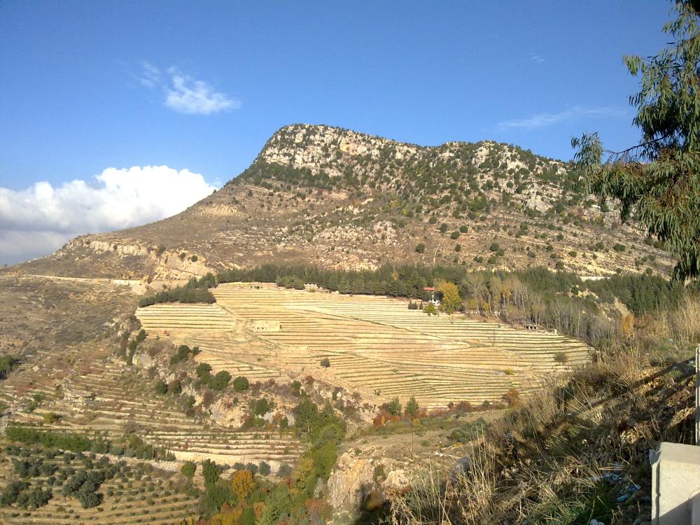 liban terase agricultura