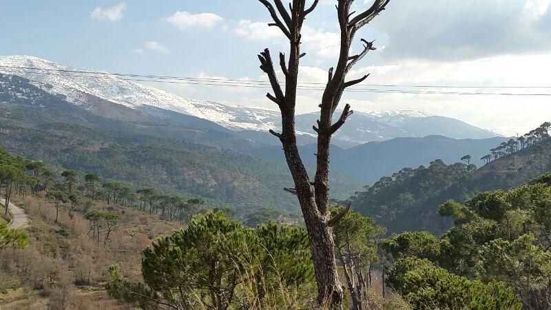 liban turism munte 4