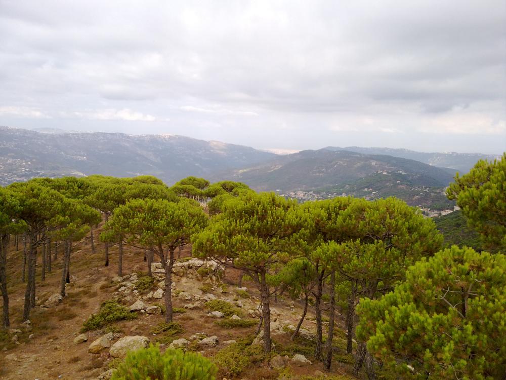 Liban turism munte 8