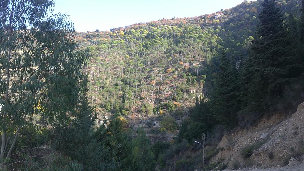 Liban turism munte 9