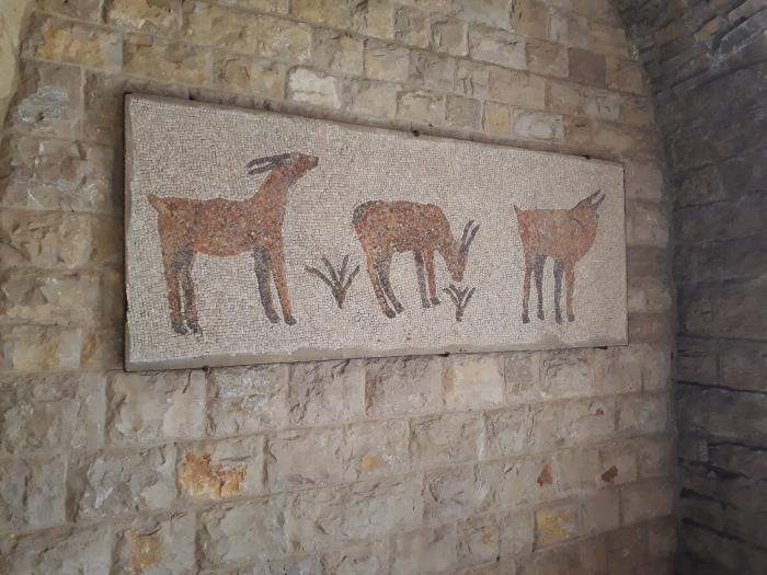 mozaicuri bizantine superbe la Beit Eddine